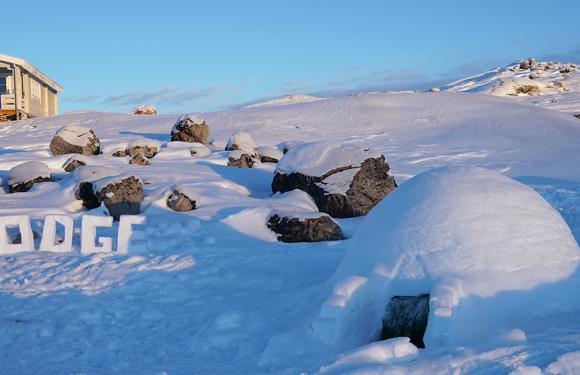 冰雪秘境:格陵兰北极深度体验之旅